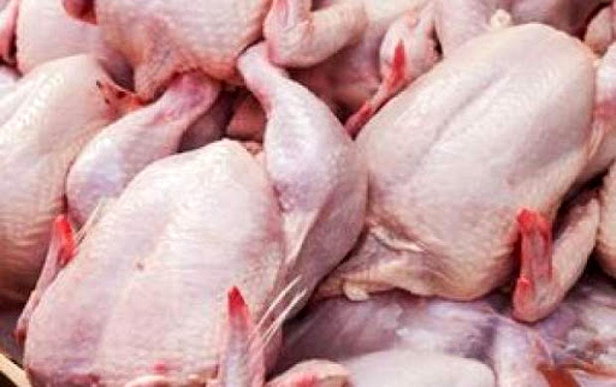 ادامه گرانی مرغی که قرار بود ۲۴ ساعته ارزان شود