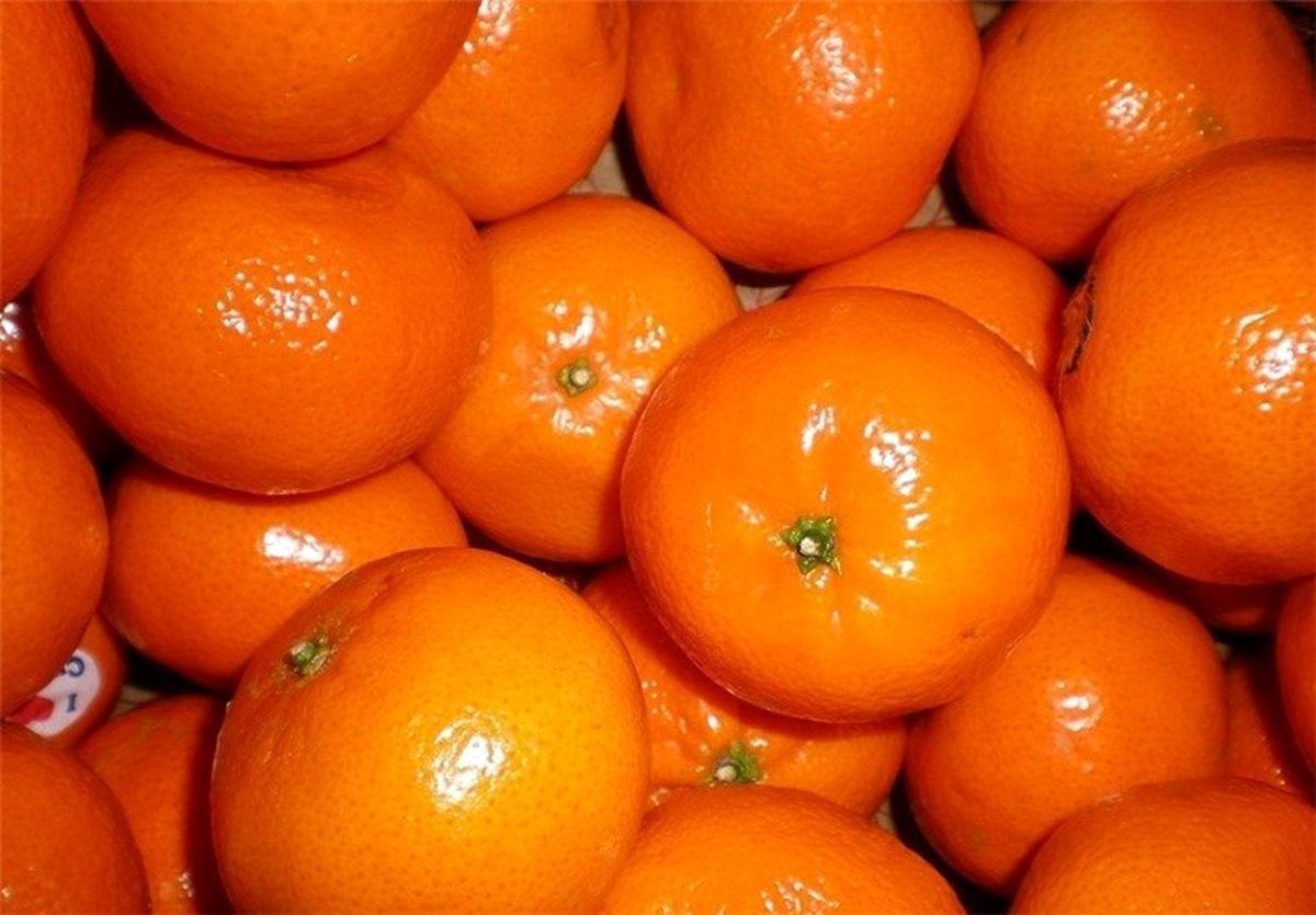 محدودیت عرضه علت اصلی گرانی نارنگی در بازار