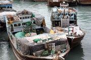 توقیف ۲ لنج صیادی متعلق به کشور امارات در آبهای جزیره کیش/ کشف یک تن صید غیرمجاز
