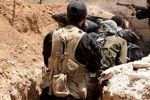 انتقال صدها عضو القاعده توسط عربستان به مأرب یمن