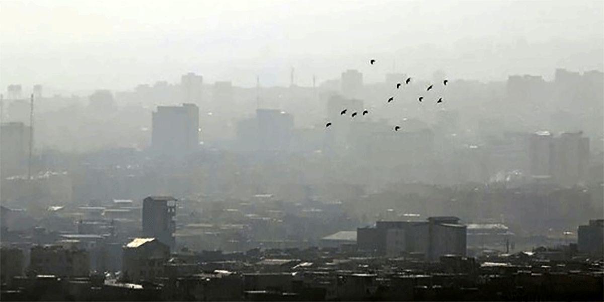 اینفوگرافیک: در هوای آلوده چی بخوریم؟!