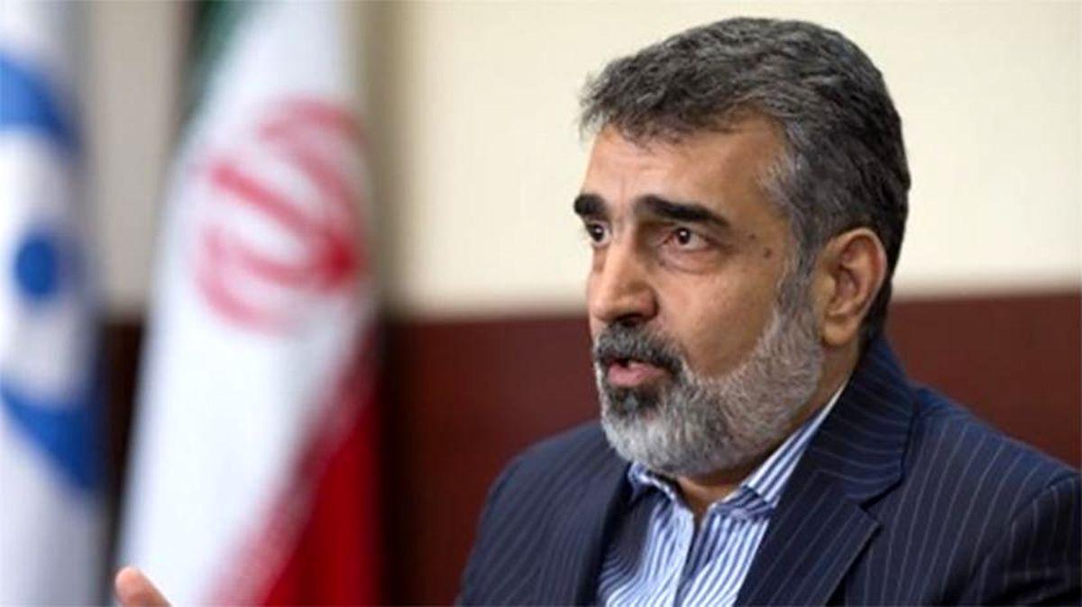 کمالوندی: شهید فخری زاده با مقامات آژانس دیداری نداشته است