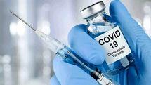 تزریق واکسن ایرانی کرونا به ۷ داوطلب دیگر از فردا
