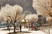 آسمان تهران برفی میشود