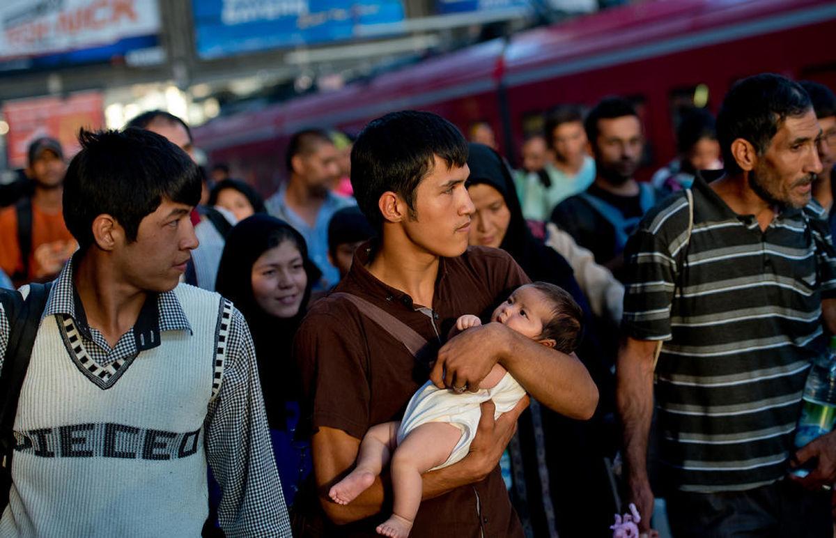 فراخوان طرح الزام به مراعات حقوق مهاجرین از سمت نمایندهی مجلس