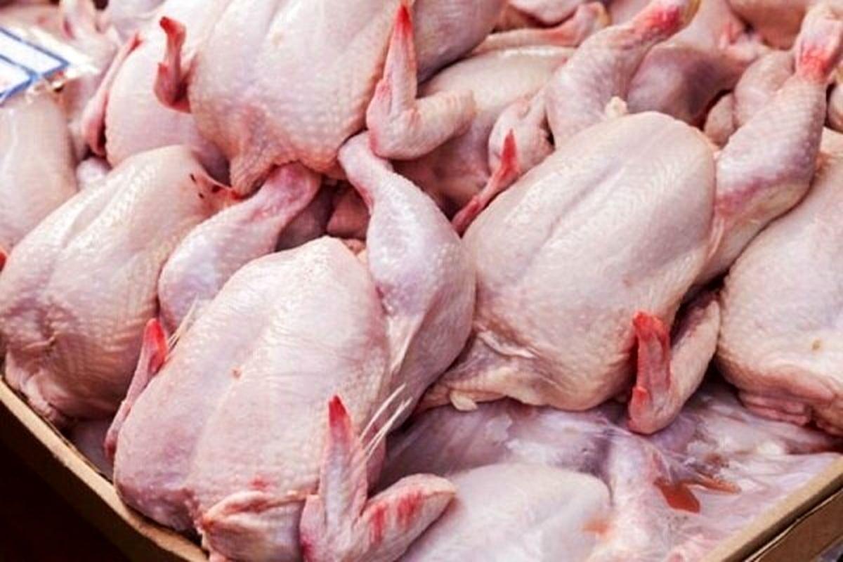 روزانه فقط ۲۰۰ تن مرغ در تهران عرضه میشود
