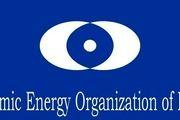 پاسخ سازمان انرژی اتمی به بیانیه تروئیکای اروپا